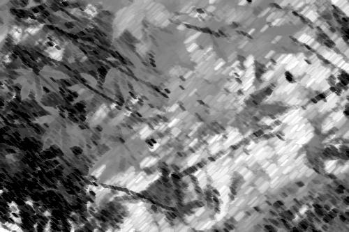 チョーク・木炭画