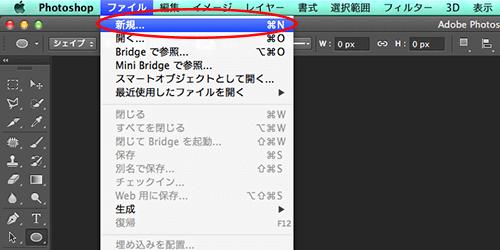 ファイル>新規作成をクリック