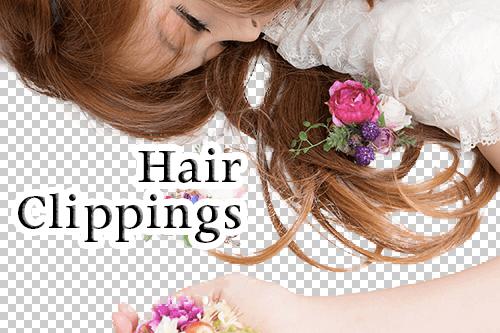 髪の毛 切り取り方法